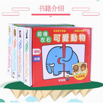 Early Learning Flash Card 4 in 1 (Taiwan Import)